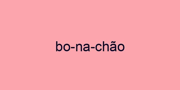 Separação silábica da palavra Bonachão: Bo-na-chão