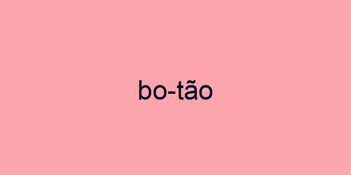 Separação silábica da palavra Botão: Bo-tão