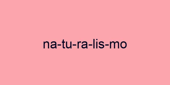 Separação silábica da palavra Naturalismo: Na-tu-ra-lis-mo