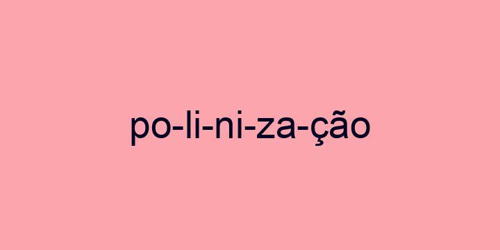 Separação silábica da palavra Polinização: Po-li-ni-za-ção