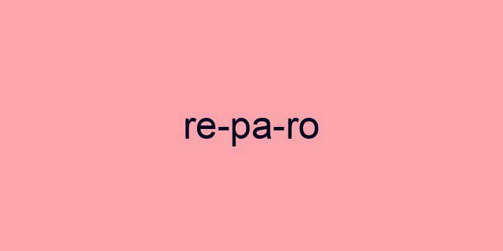 Separação silábica da palavra Reparo: Re-pa-ro