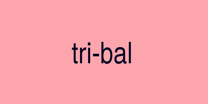 Separação silábica da palavra Tribal: Tri-bal